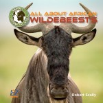 All About African Wildebeests