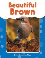 Beautiful Brown: Read-Along eBook