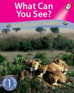 What Can You See? (Readaloud)