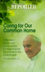 Caring for our Common Home: A Readers' Guide and Commentary on Pope Francis' Encyclical on the Environment