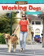 Amazing Animals: Working Dogs: Summarizing Data
