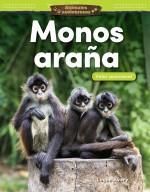 Animales asombrosos: Monos araña: Valor posicional