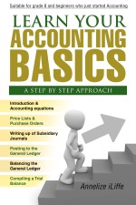 Learn your Accounting Basics - A step by step approach: Junior High School and beginners
