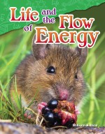 Life and the Flow of Energy