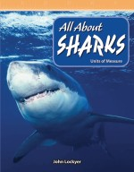 All About Sharks: Units of Measure