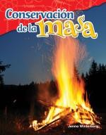 Conservación de la masa