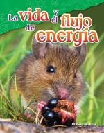 La vida y el flujo de energía
