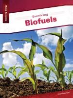 Examining Biofuels