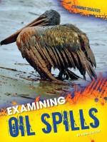 Examining Oil Spills