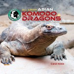All About Asian Komodo Dragons