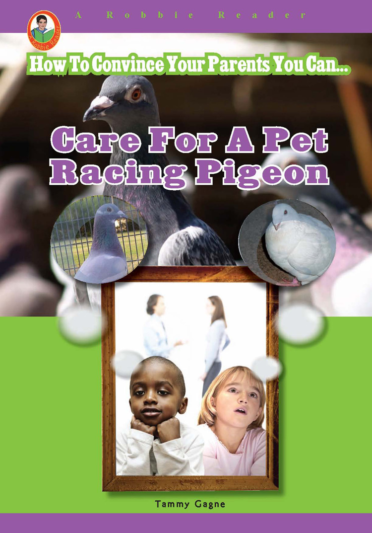 Care for a Pet Racing Pigeon By Tammy Gagne
