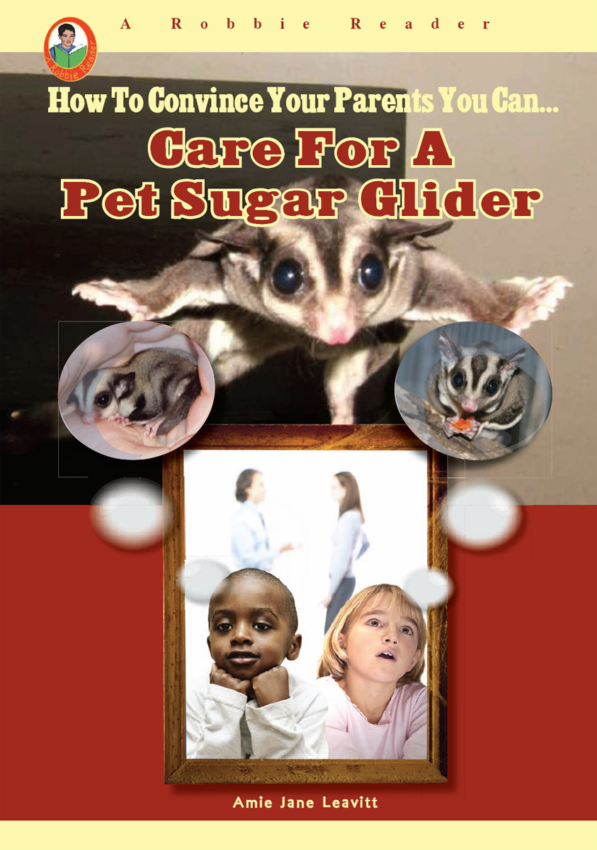 Care for a Pet Sugar Glider By Amie Jane Leavitt