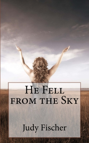 He Fell from the Sky By Judy Fischer