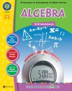 Algebra - Drill Sheets Gr. 6-8