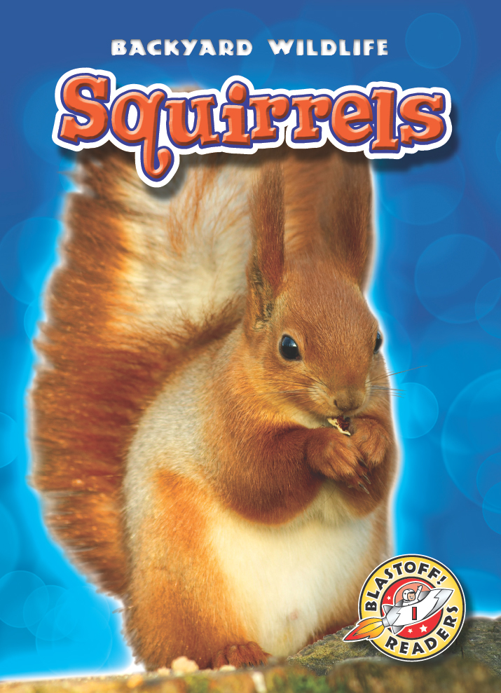 Squirrels By Derek Zobel