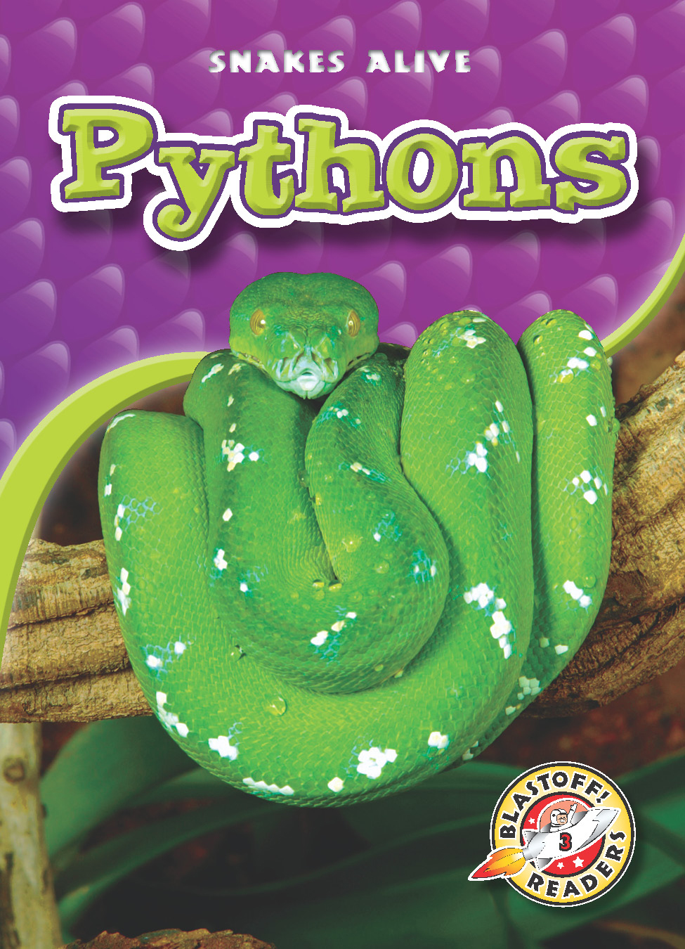 Pythons By Colleen Sexton