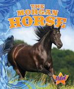 The Morgan Horse