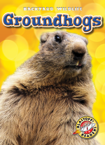 Groundhogs