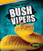 Bush Vipers