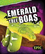 Emerald Tree Boas