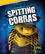 Spitting Cobras
