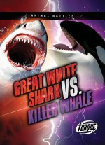 Great White Shark vs. Killer Whale