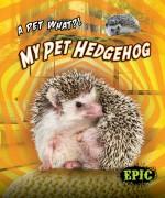 My Pet Hedgehog