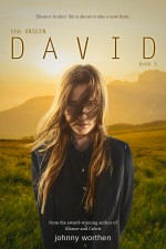 The Unseen David