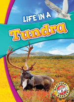 Life in a Tundra