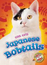 Japanese Bobtails