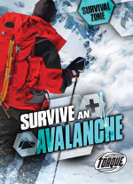 Survive an Avalanche