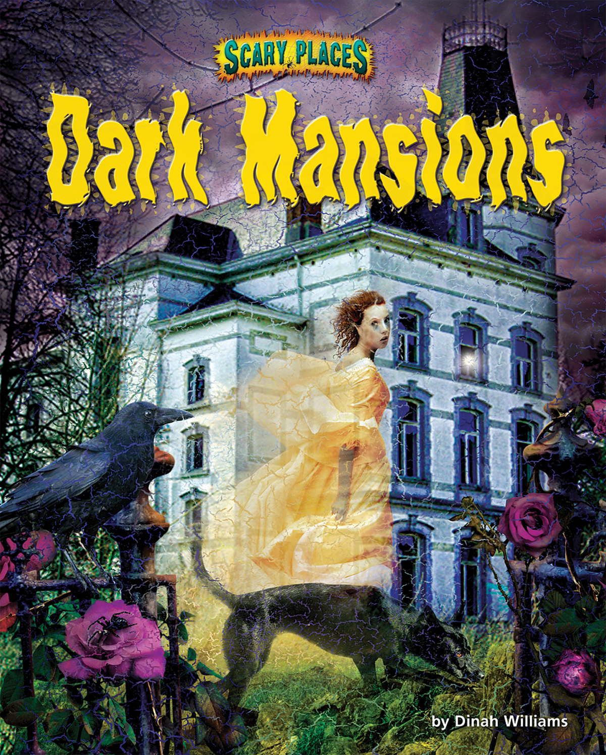 Dark Mansions By Dinah Williams