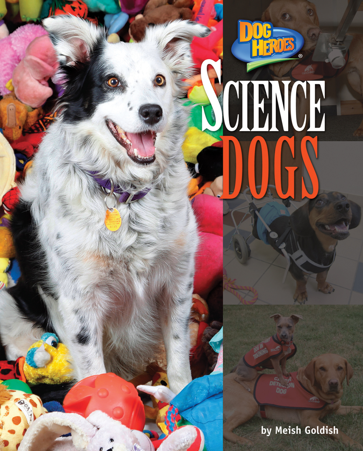 Science Dogs By Meish Goldish
