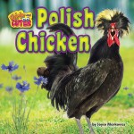 Polish Chicken