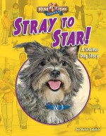 Stray to Star!