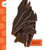 Bats: Read Along or Enhanced eBook