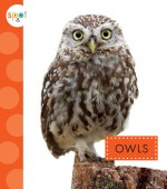 Owls: Read Along or Enhanced eBook