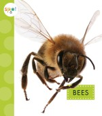 Bees: Read Along or Enhanced eBook