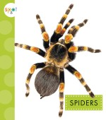 Spiders: Read Along or Enhanced eBook