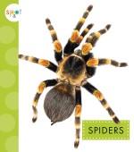 Spiders: Read Along or Enhanced eBook