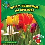 What Blossoms in Spring?: Read Along or Enhanced eBook
