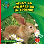 What Do Animals Do in Spring?: Read Along or Enhanced eBook