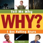 I See Falling Stars: Read Along or Enhanced eBook