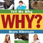 Bears Hibernate: Read Along or Enhanced eBook