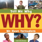 We Have Tornadoes: Read Along or Enhanced eBook
