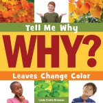 Leaves Change Color: Read Along or Enhanced eBook