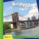 Bridges: Read Along or Enhanced eBook