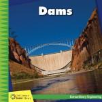 Dams: Read Along or Enhanced eBook