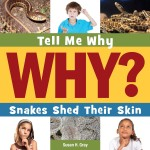 Snakes Shed Their Skin: Read Along or Enhanced eBook