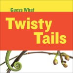 Twisty Tails: Chameleon: Read Along or Enhanced eBook